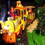 Jungle Safari Train